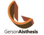 Gerson_Aisthesis